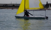 Sailing the club Laser Pico - concentrating hard!